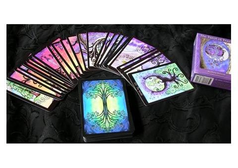 Прорицание,тарология, целительство,любовная магия,ретуалы на бизнес и благополучие,снятие порчи.